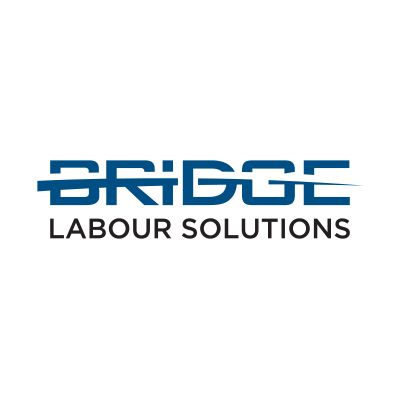 bridge labour solutions south africa